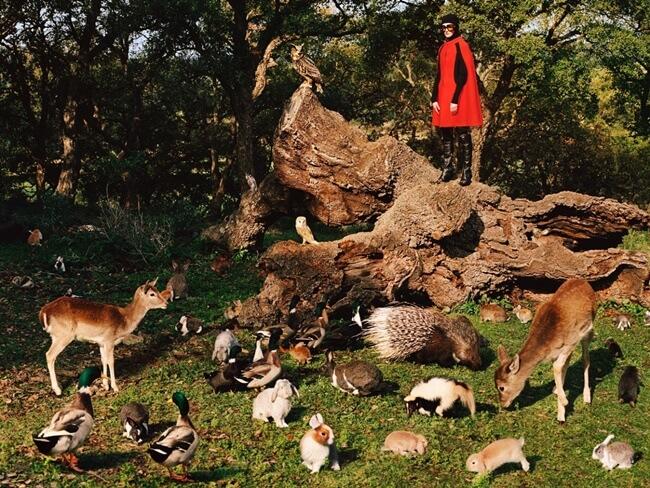 Las nuevas estrellas de la campaña de Gucci son animales