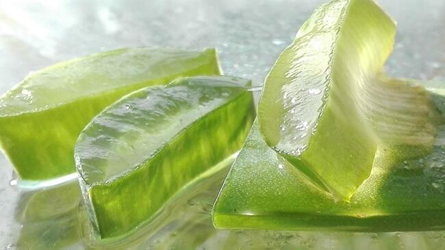 Los beneficios del Aloe Vera para tu piel