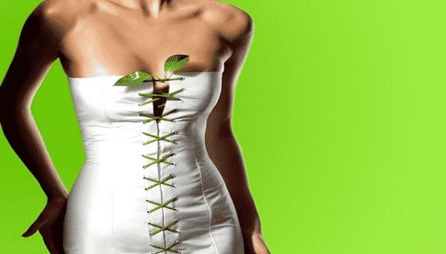 Adelgazar con plantas ¡entérate bien de su función!