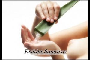 Aloessens, la esencia del Aloe Vera en tu piel