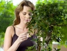 mujer con planta