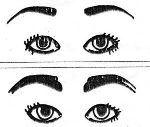 muy-separadas-de-los-ojos