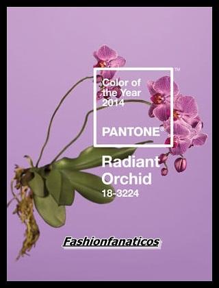 Orquídea Radiante, nuevo color de moda